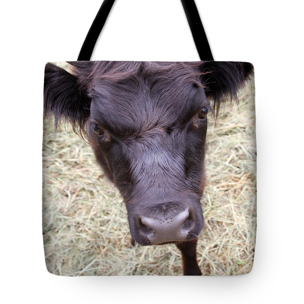 Animal Tote Bag featuring the photograph Don't Mess With Me by Karol Livote