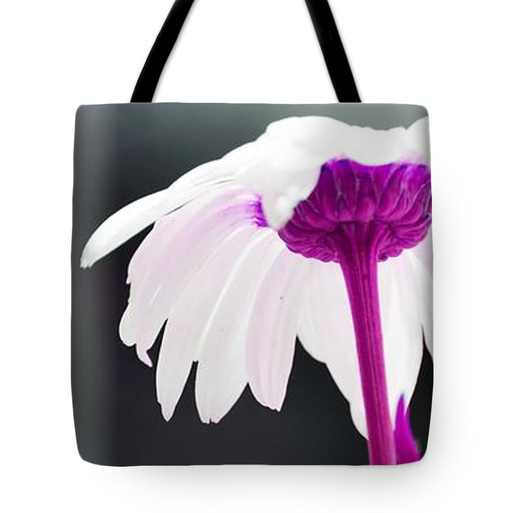 Daisy Tote Bag featuring the photograph Doodled Daisy by Traci Cottingham