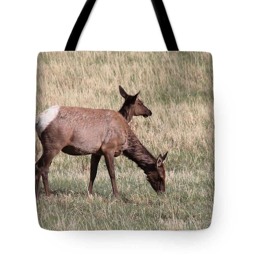 Elk Tote Bag featuring the photograph Double Vision by Dana Bechler