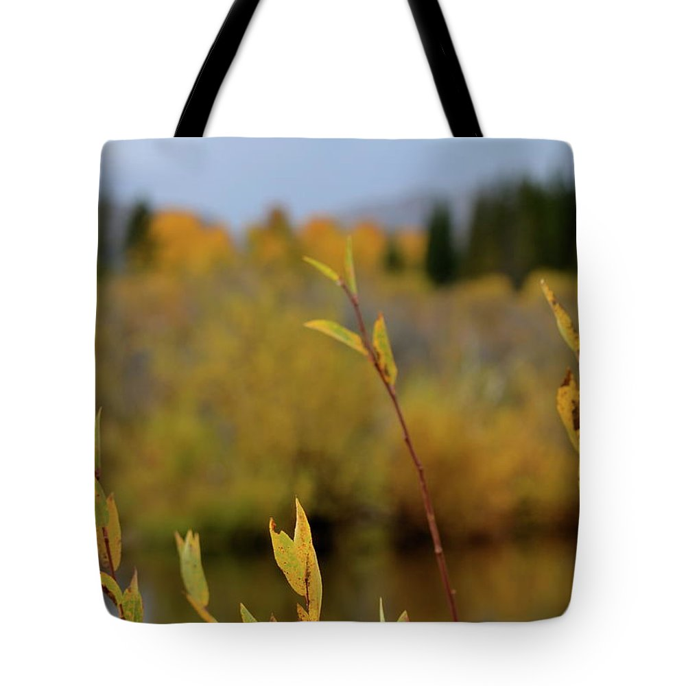 Autumn Tote Bag featuring the photograph By The River by Beverley Harper Tinsley