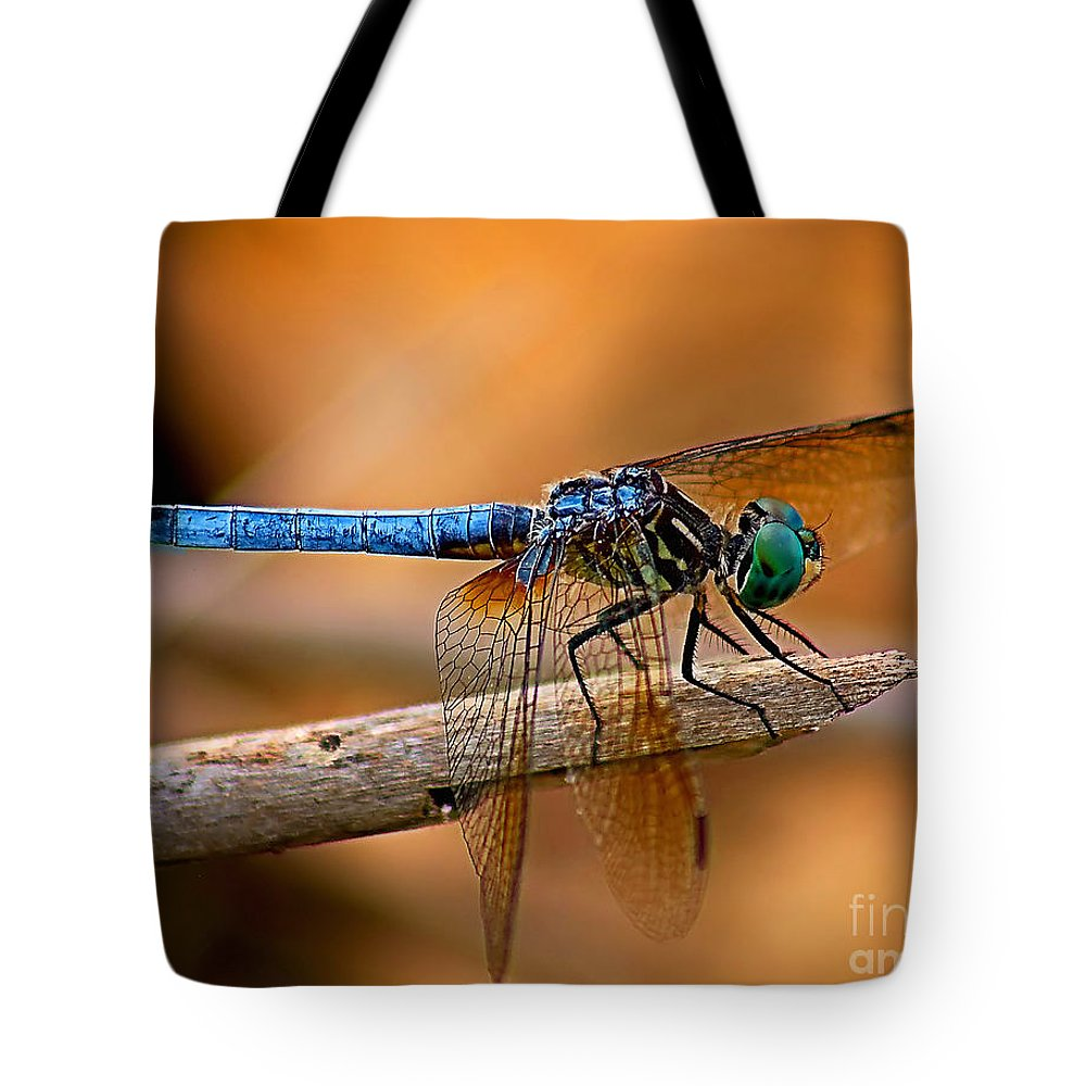 Animals Tote Bag featuring the photograph Dragon Fly by Nick Zelinsky