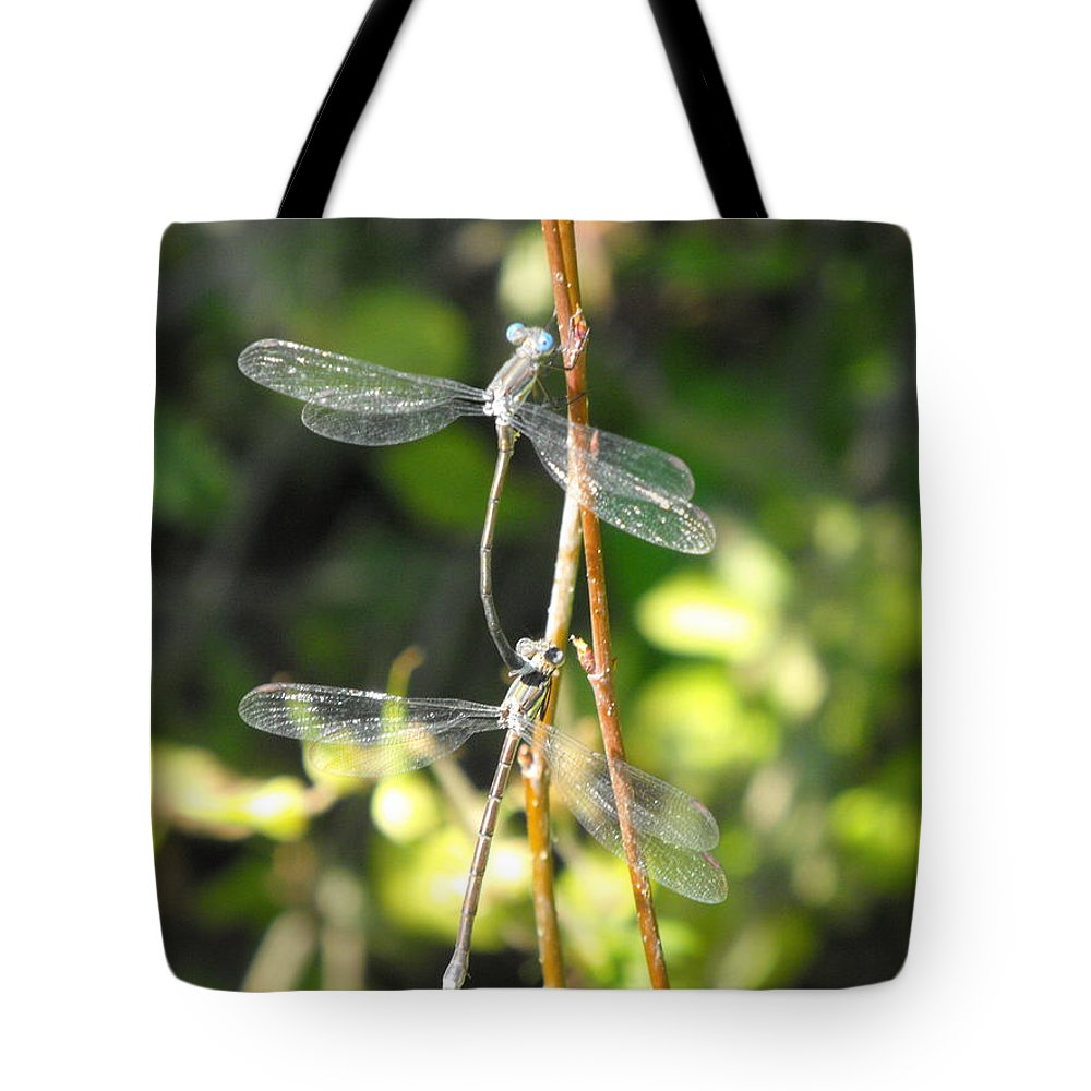 Dragonflies Tote Bag featuring the photograph Dragonflies by Paulina Roybal