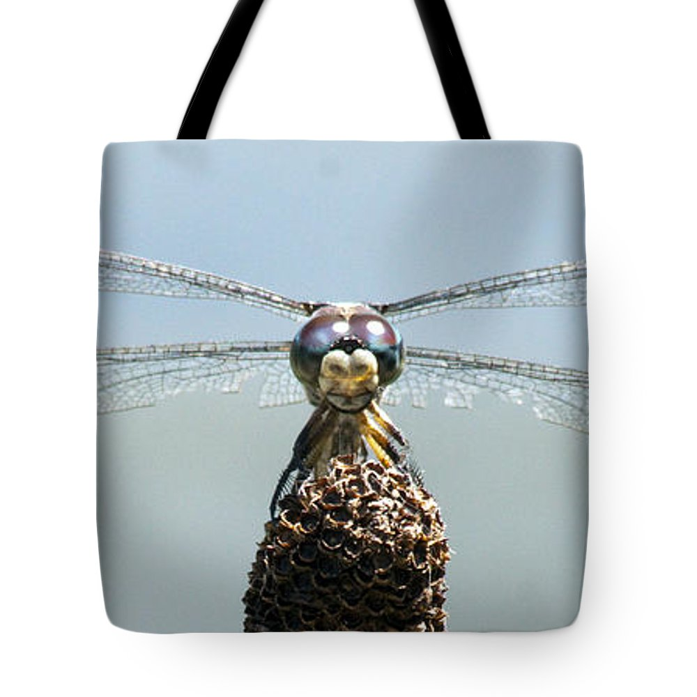 Dragonfly Tote Bag featuring the photograph Dragonfly by Darleen Stry