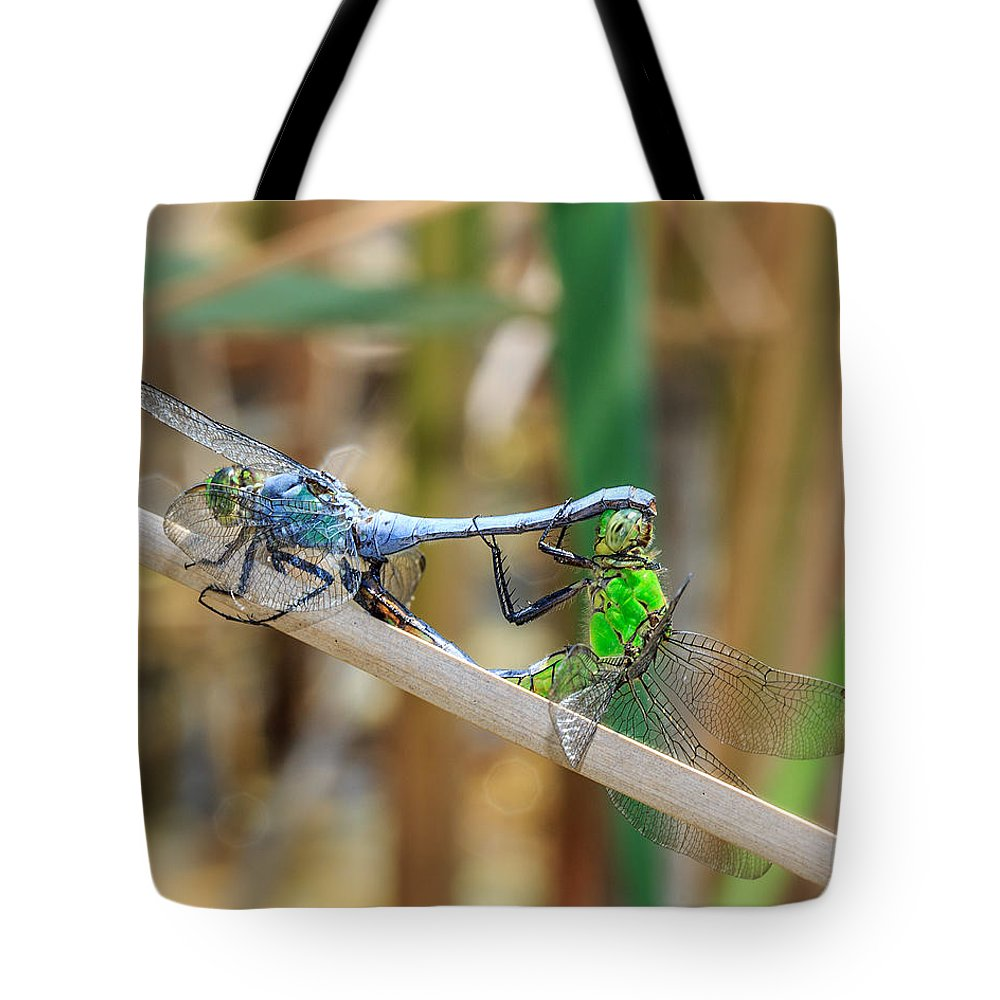 Dragonfly Tote Bag featuring the photograph Dragonfly Love by Everet Regal