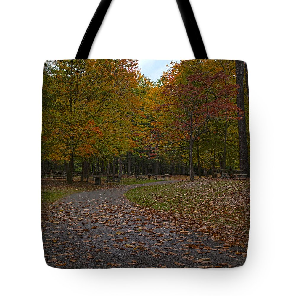 Joshua House Photography Tote Bag featuring the photograph Dreaming Of Picnickers by Joshua House