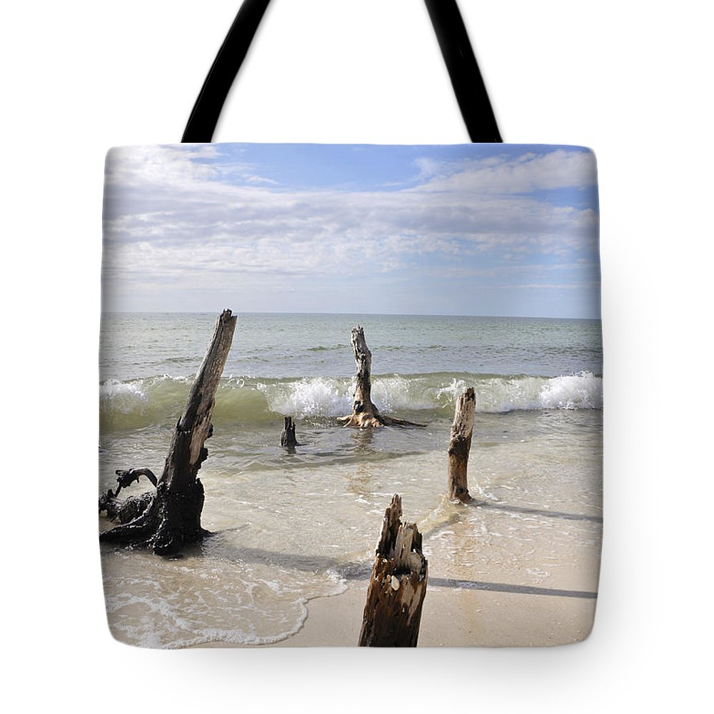Driftwood Tote Bag featuring the photograph Driftwood Stands Watch by Christine Stonebridge