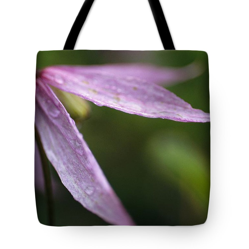 North America Tote Bag featuring the photograph Droplets Of Dew On A Pink Wildflower by Michael Melford
