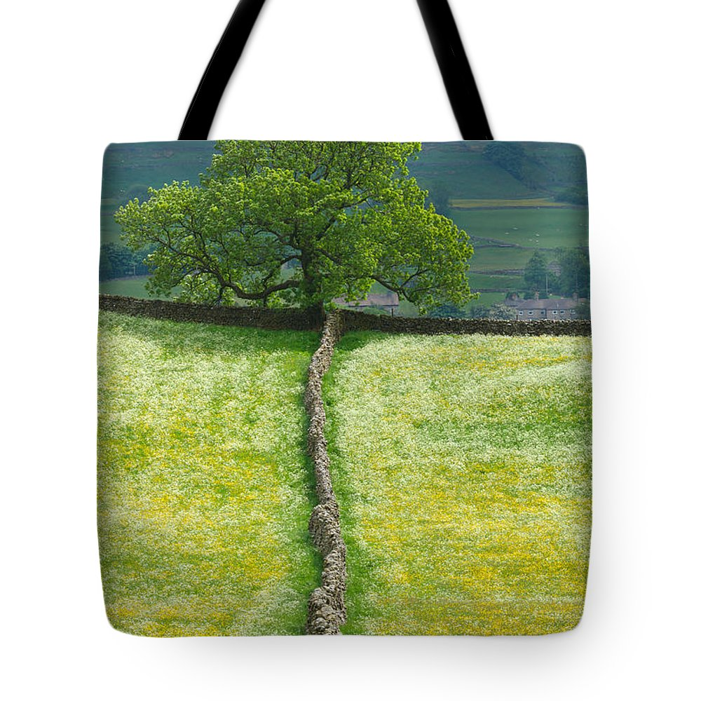 Dry Tote Bag featuring the photograph Dry Stone Wall And Lone Tree by Louise Heusinkveld