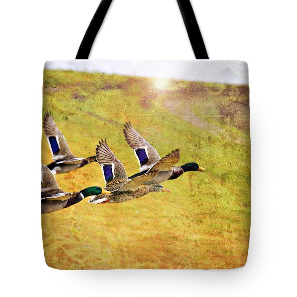 Ducks In Flight Tote Bag featuring the photograph Ducks In Flight V4 by Douglas Barnard