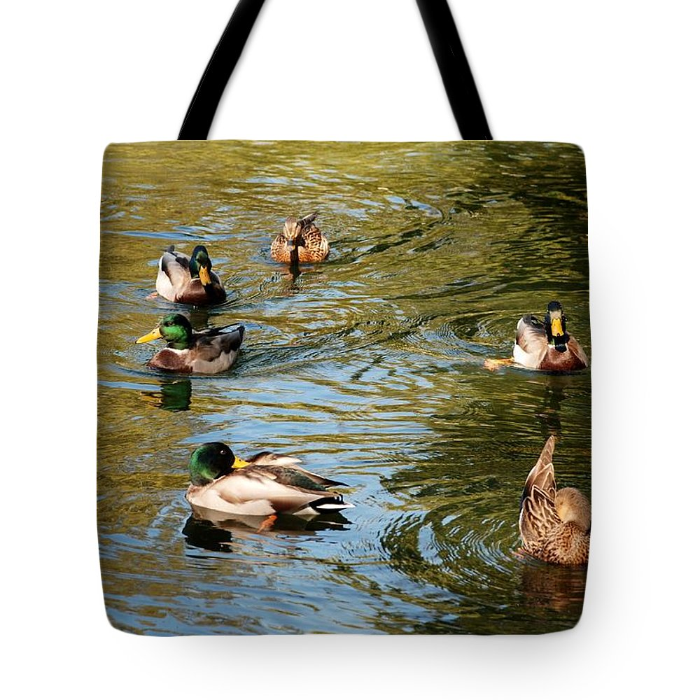 Central Park Tote Bag featuring the photograph Ducks On The Water by Rob Hans