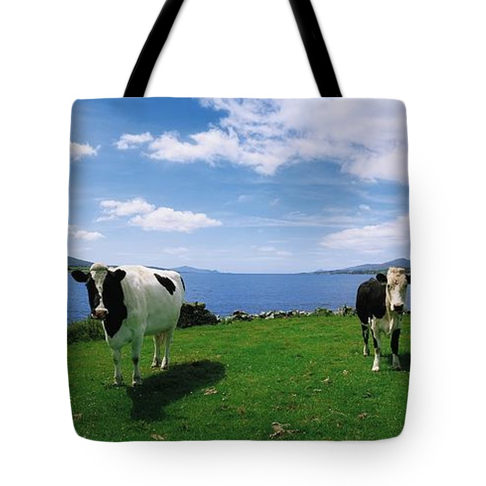 Blue Sky Tote Bag featuring the photograph Durrus, Sheeps Head, Co Cork, Ireland by The Irish Image Collection