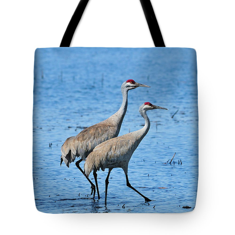 Yellowstone National Park Tote Bag featuring the photograph Dynamic Duo by Greg Norrell