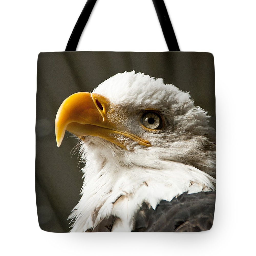 Eagle Tote Bag featuring the photograph Eagle Eye by Jon Berghoff