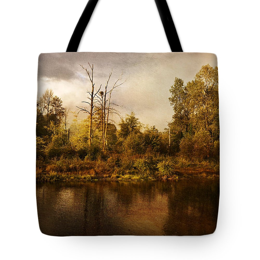 Eagle's Rest Tote Bag featuring the photograph Eagle's Rest by Wes and Dotty Weber