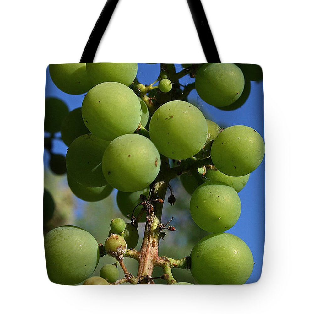 Outdoors Tote Bag featuring the photograph Early Grapes by Susan Herber