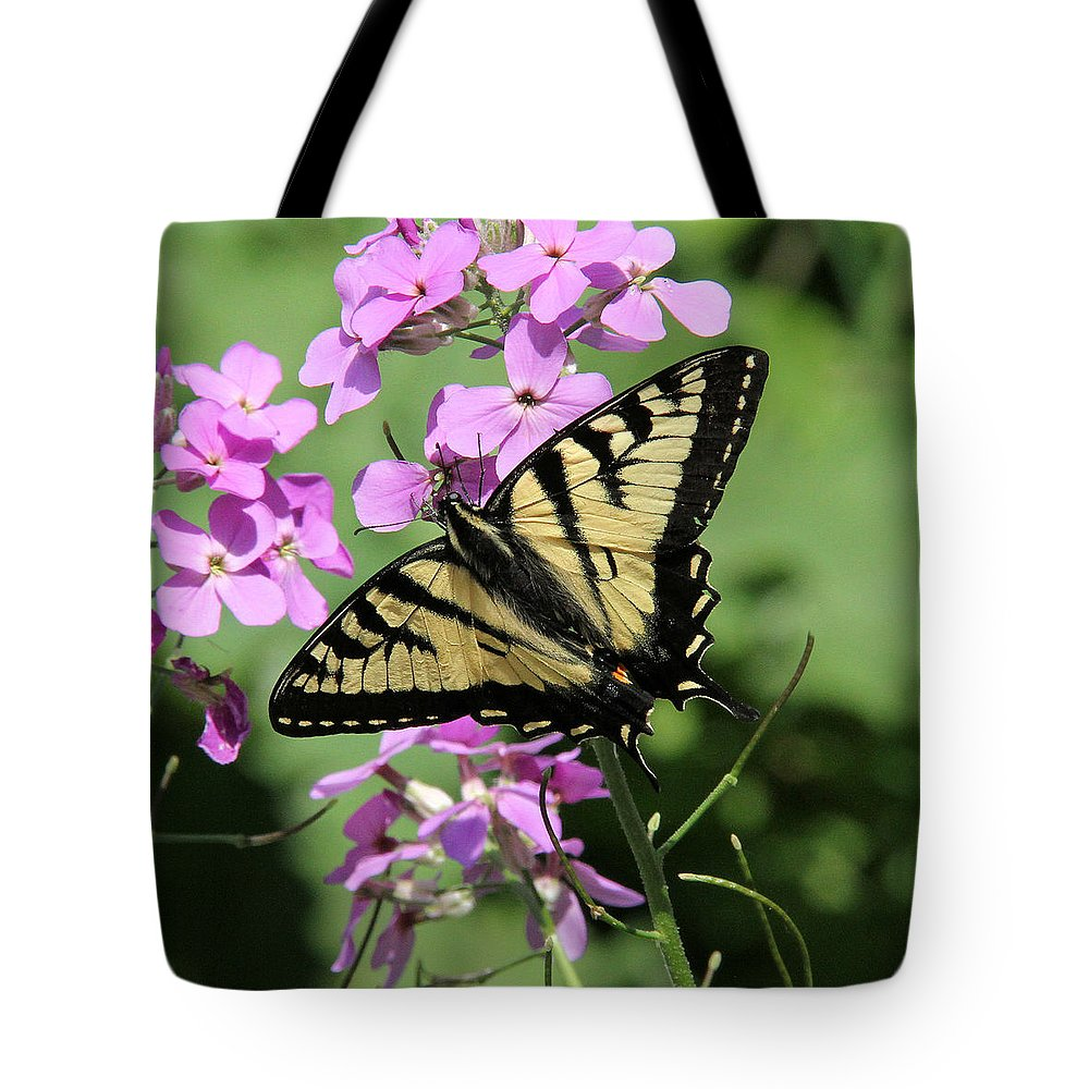Canadian Tiger Swallowtail Tote Bag featuring the photograph Canadian Tiger Swallowtail On Phlox by Doris Potter