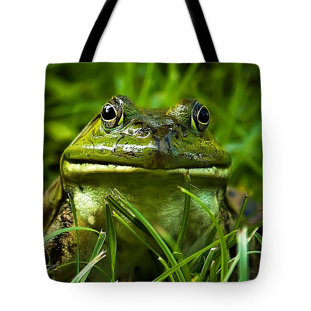 Frog Tote Bag featuring the photograph Easy To Be Green by George Cathcart