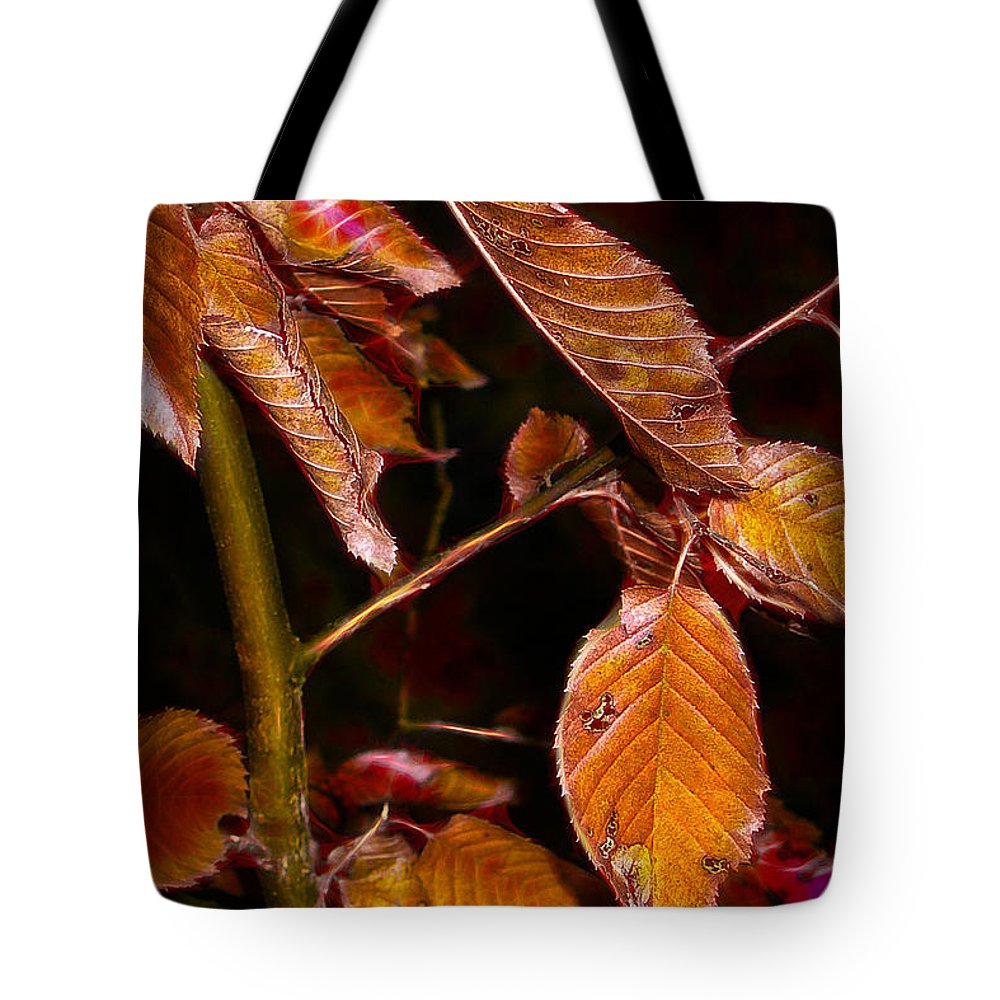 Autumn Tote Bag featuring the photograph Edge Of Autumn by Judi Bagwell