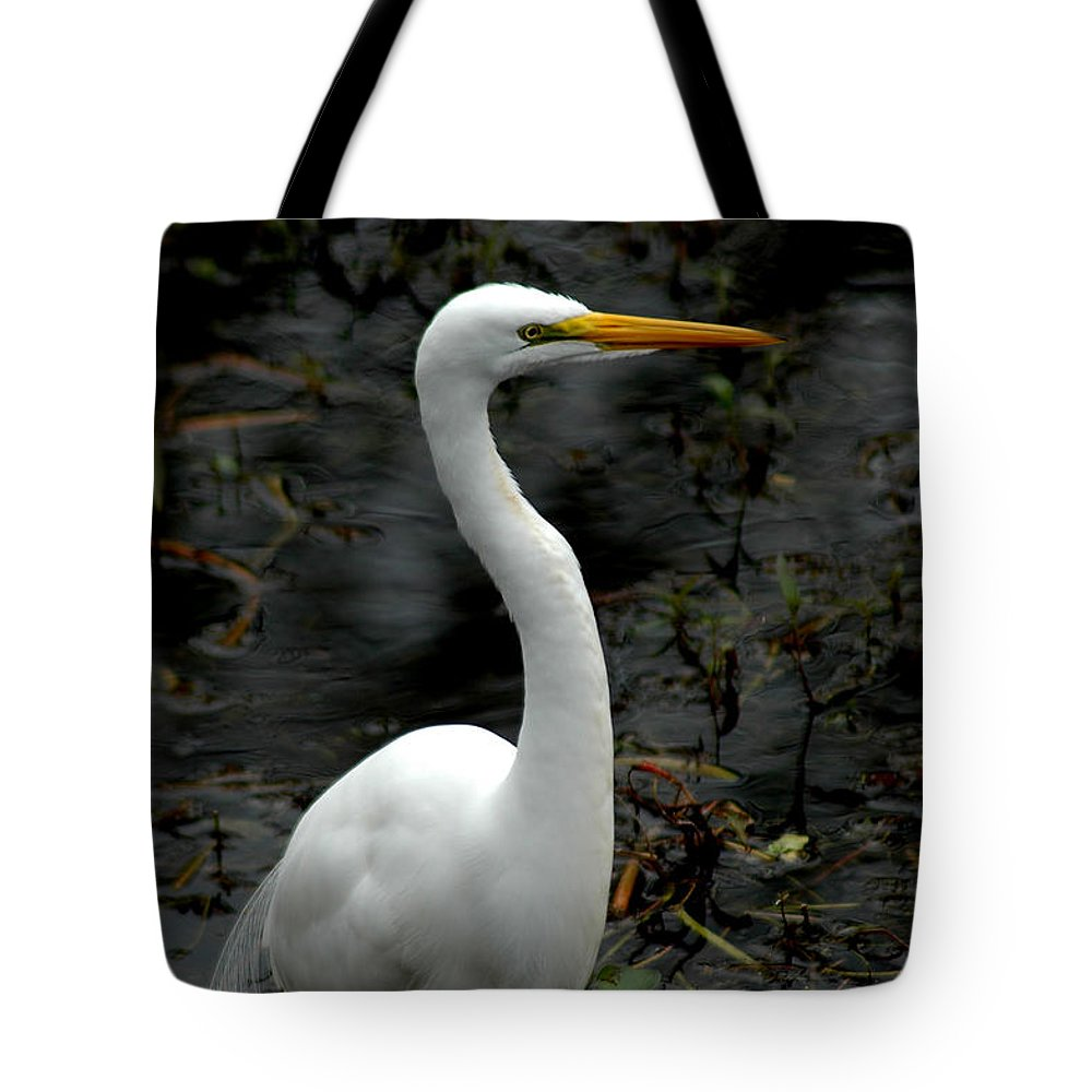 Reddish Egret Tote Bag featuring the photograph Egret by David Weeks