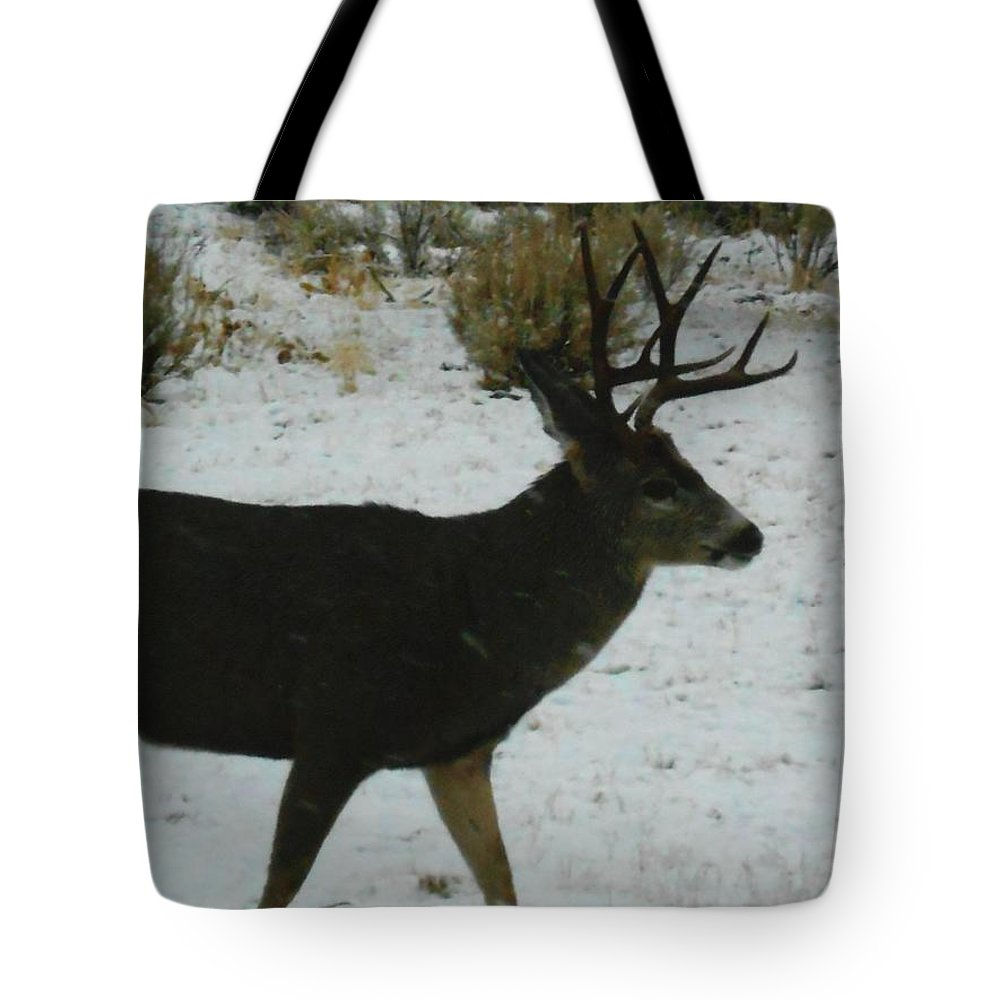 Deer Tote Bag featuring the photograph Eight Points by April Cox