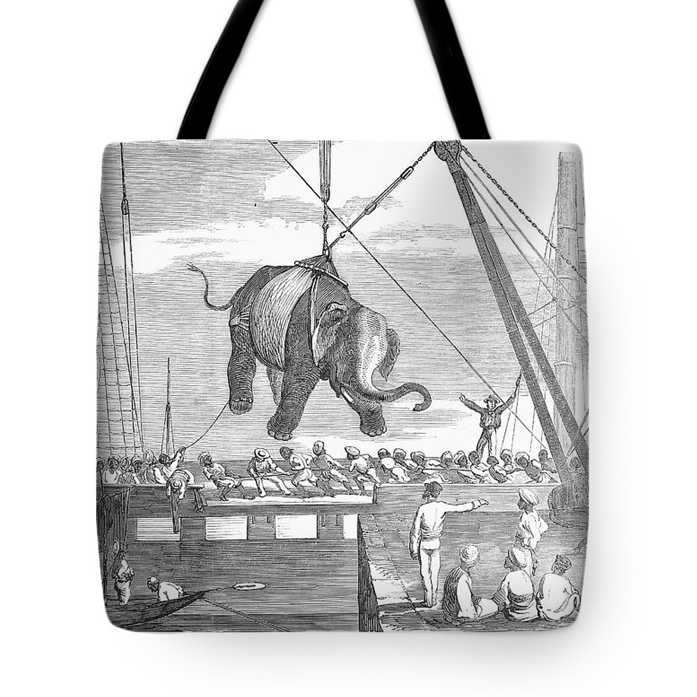 1858 Tote Bag featuring the photograph Elephant Hoist, 1858 by Granger