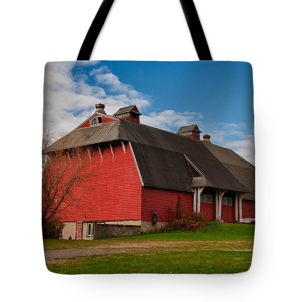 Barn Tote Bag featuring the photograph Elusive by Guy Whiteley