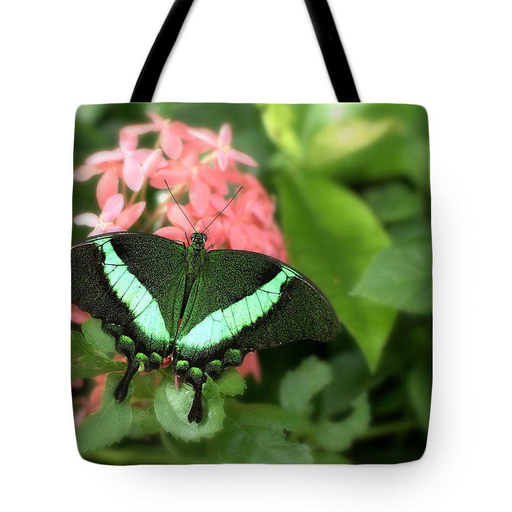 Papilio Palinurus Tote Bag featuring the photograph Emerald Swallowtail by Floyd Menezes