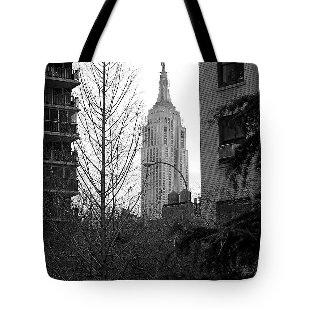 Empire State Building Tote Bag featuring the photograph Empire State Building by Mark Gilman