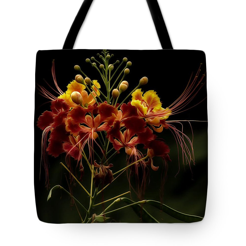 Saint Louis Zoo Tote Bag featuring the photograph Enchantress by Linda Tiepelman