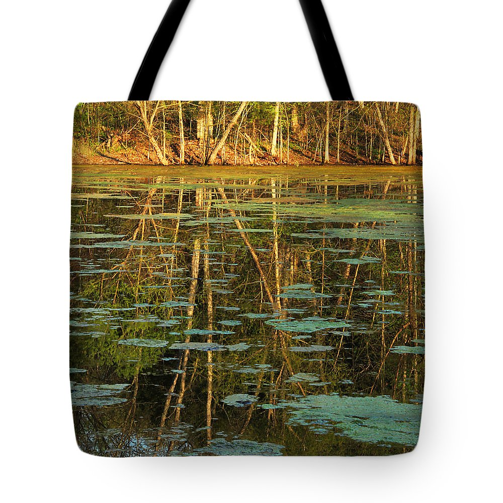 Nature Tote Bag featuring the photograph Evening Light On Missouri Pond 2 by Greg Matchick