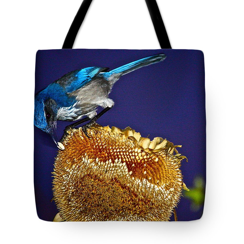 Birds Tote Bag featuring the photograph Evening Snack by Diana Hatcher