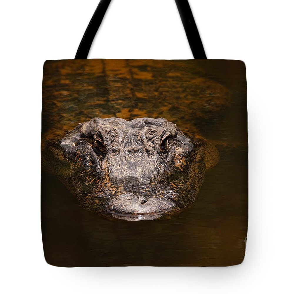 Alligator Tote Bag featuring the photograph Everglades Alligator by Joe Elliott