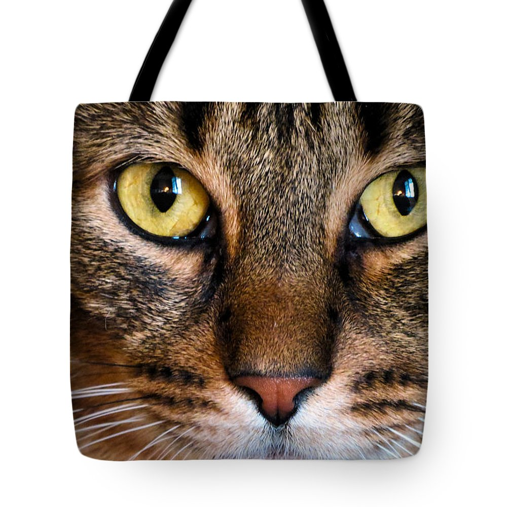 Cat Tote Bag featuring the photograph Face Framed Feline by Art Dingo