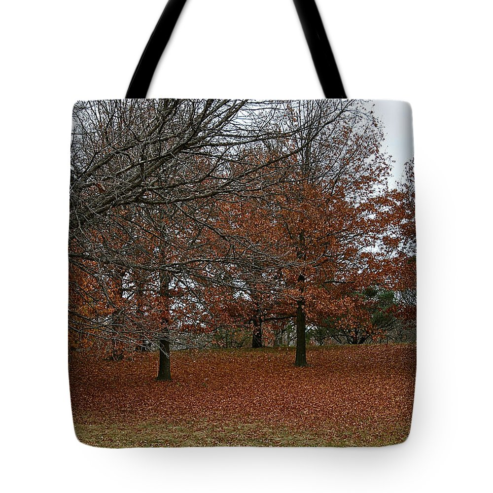 Outdoors Tote Bag featuring the photograph Fading Palate by Susan Herber