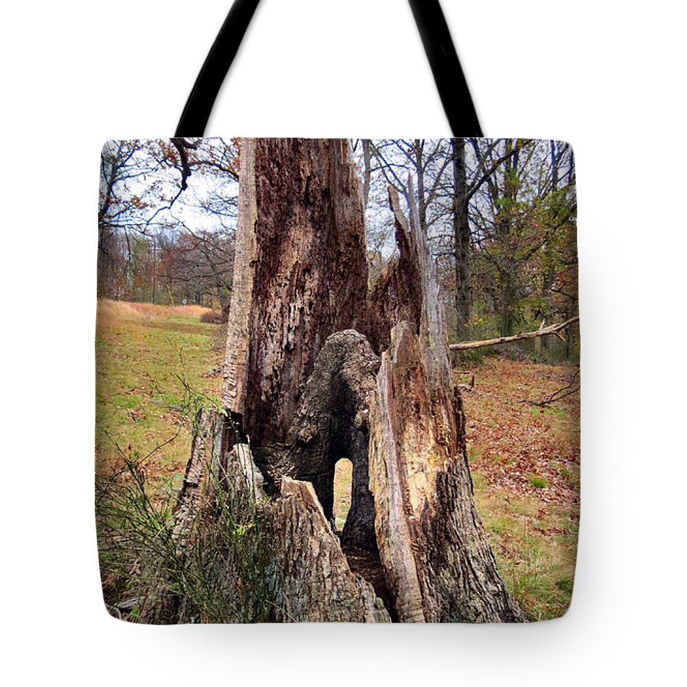 Nature Tote Bag featuring the photograph Fairy Trunklet by Art Dingo