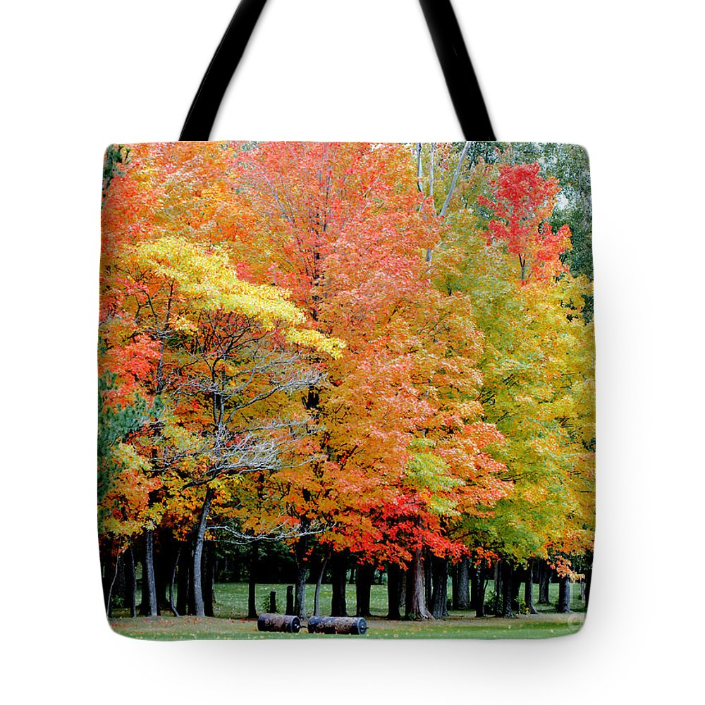 Autumn Colors Tote Bag featuring the photograph Fall In Michigan by Optical Playground By MP Ray