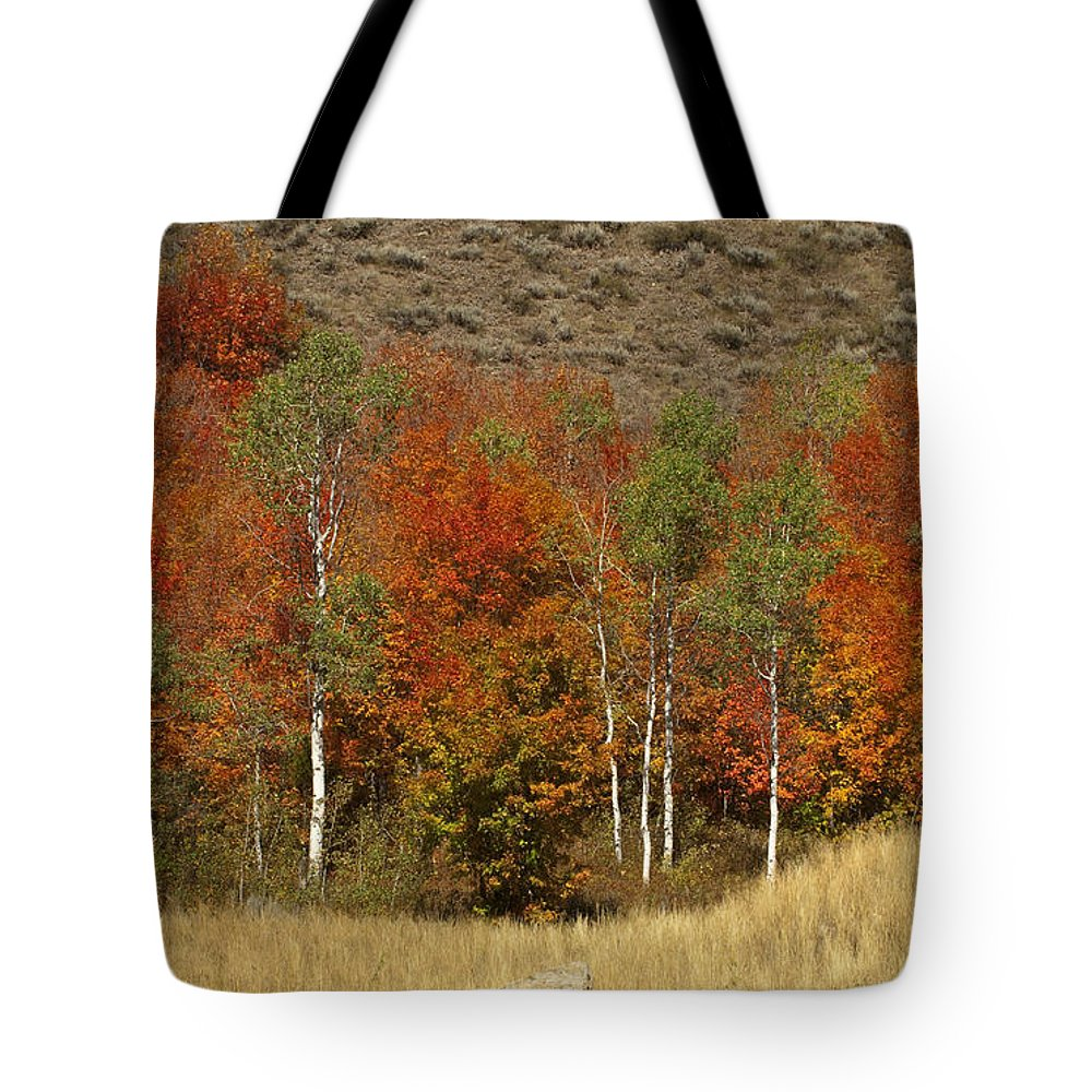 Sandra Bronstein Tote Bag featuring the photograph Fall In Snake River Canyon by Sandra Bronstein