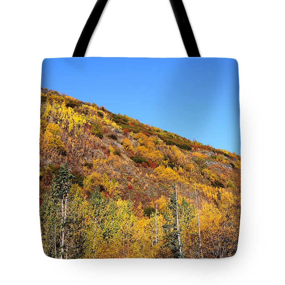 Doug Lloyd Tote Bag featuring the photograph Fall In The Mountains by Doug Lloyd