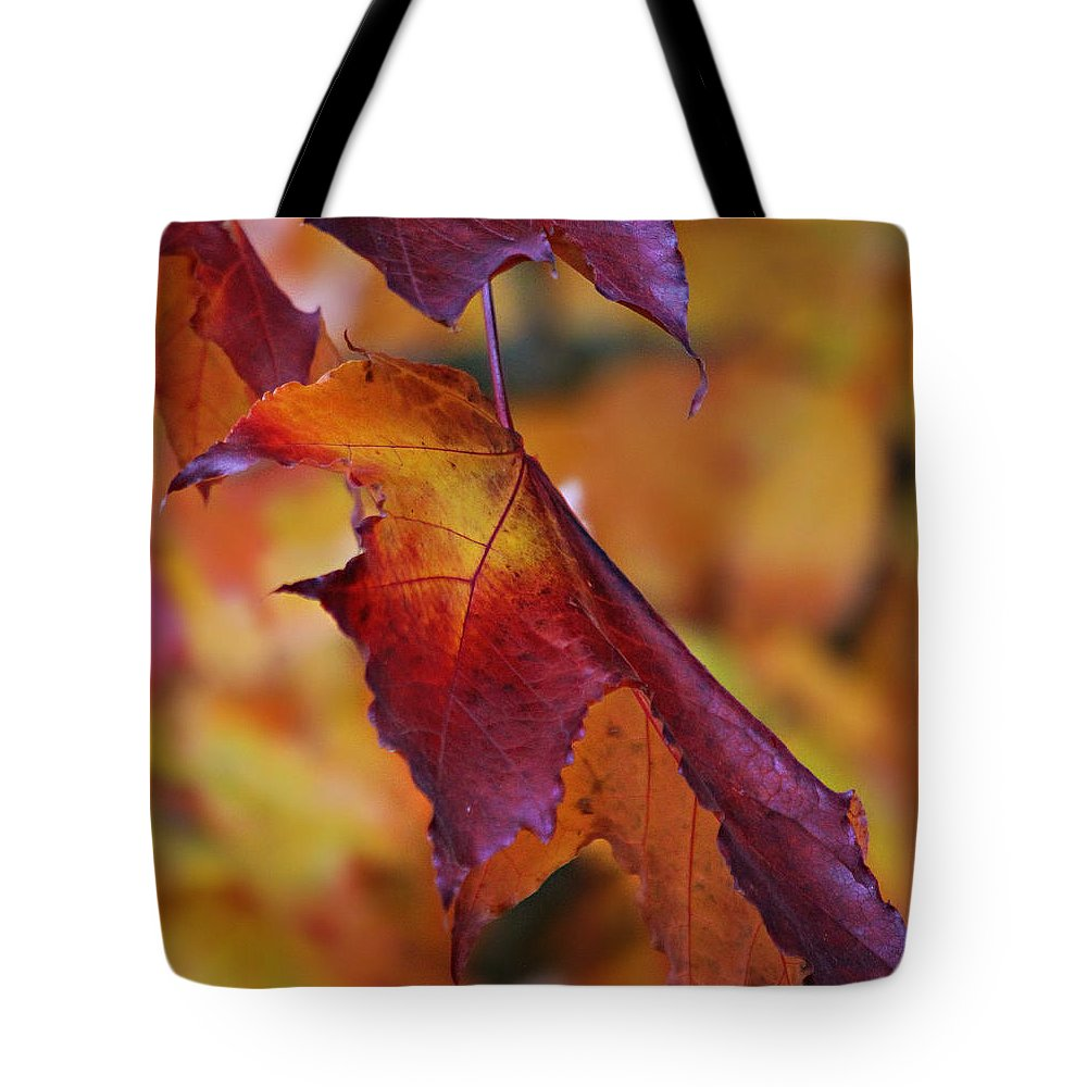 Autumn Tote Bag featuring the photograph Fall Leaf by Jeanette C Landstrom