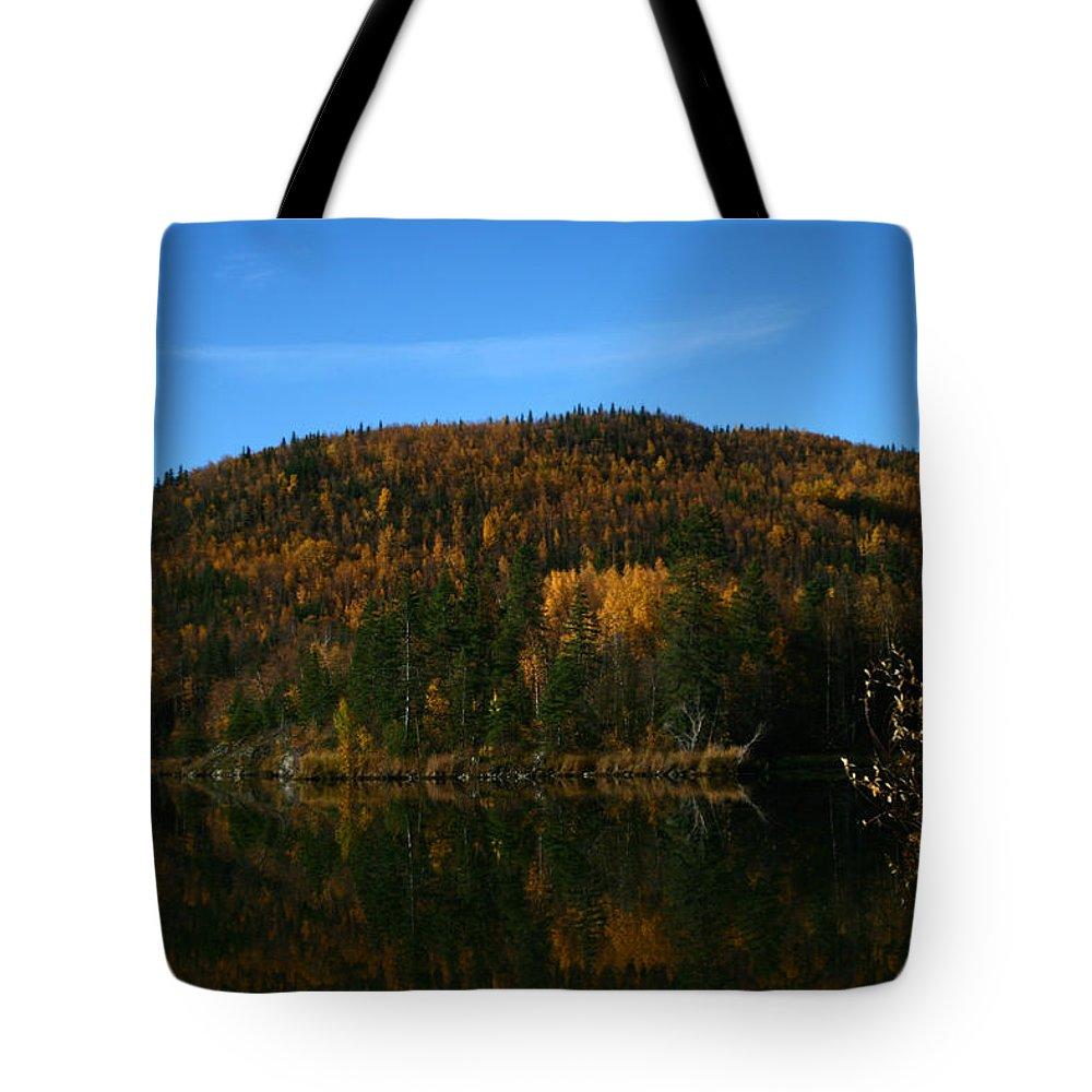 Doug Lloyd Tote Bag featuring the photograph Fall Mix by Doug Lloyd