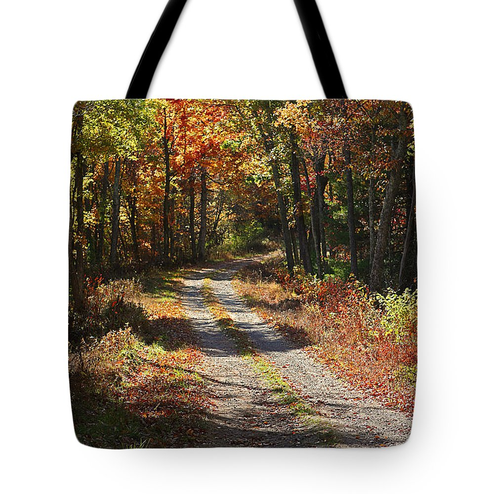 Autumn Tote Bag featuring the photograph Fall On The Wyrick Trail by Denise Romano