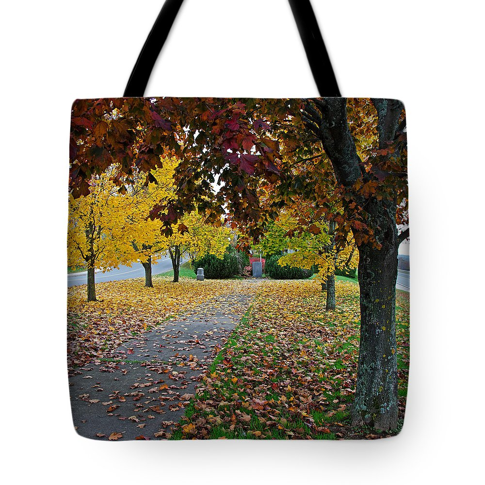 Fall Tote Bag featuring the photograph Fall Park by Jeff Galbraith