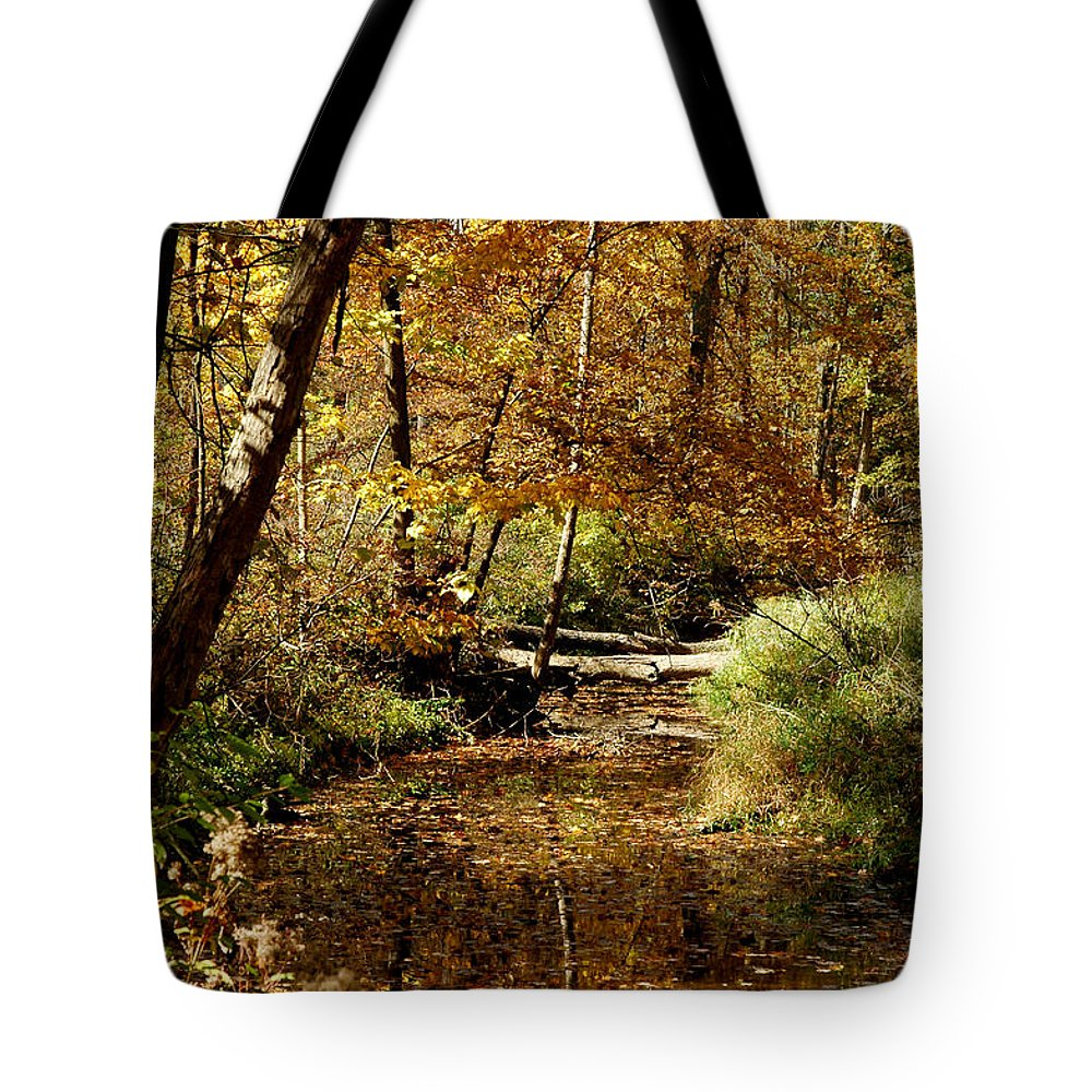 Landscapes Tote Bag featuring the photograph Fall River Colors by LeeAnn McLaneGoetz McLaneGoetzStudioLLCcom