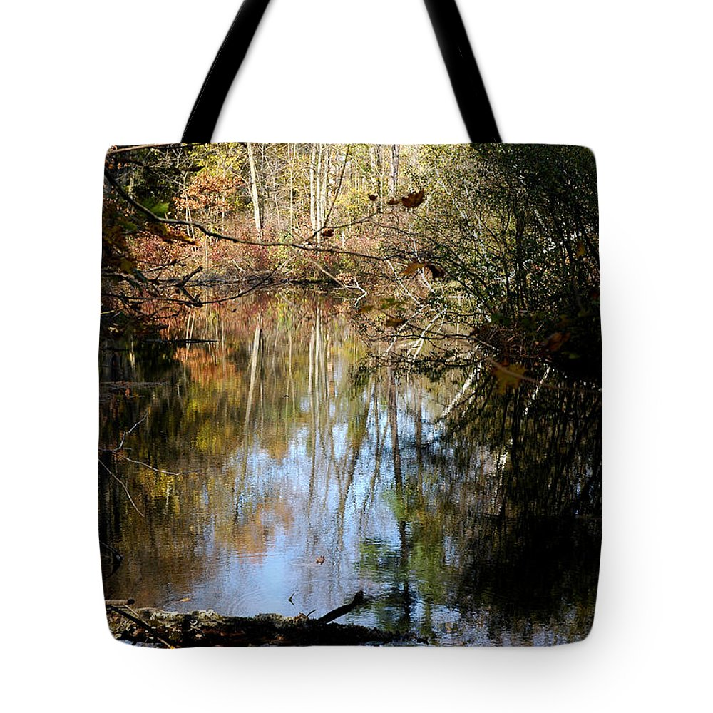 Usa Tote Bag featuring the photograph Fall River Undertones by LeeAnn McLaneGoetz McLaneGoetzStudioLLCcom
