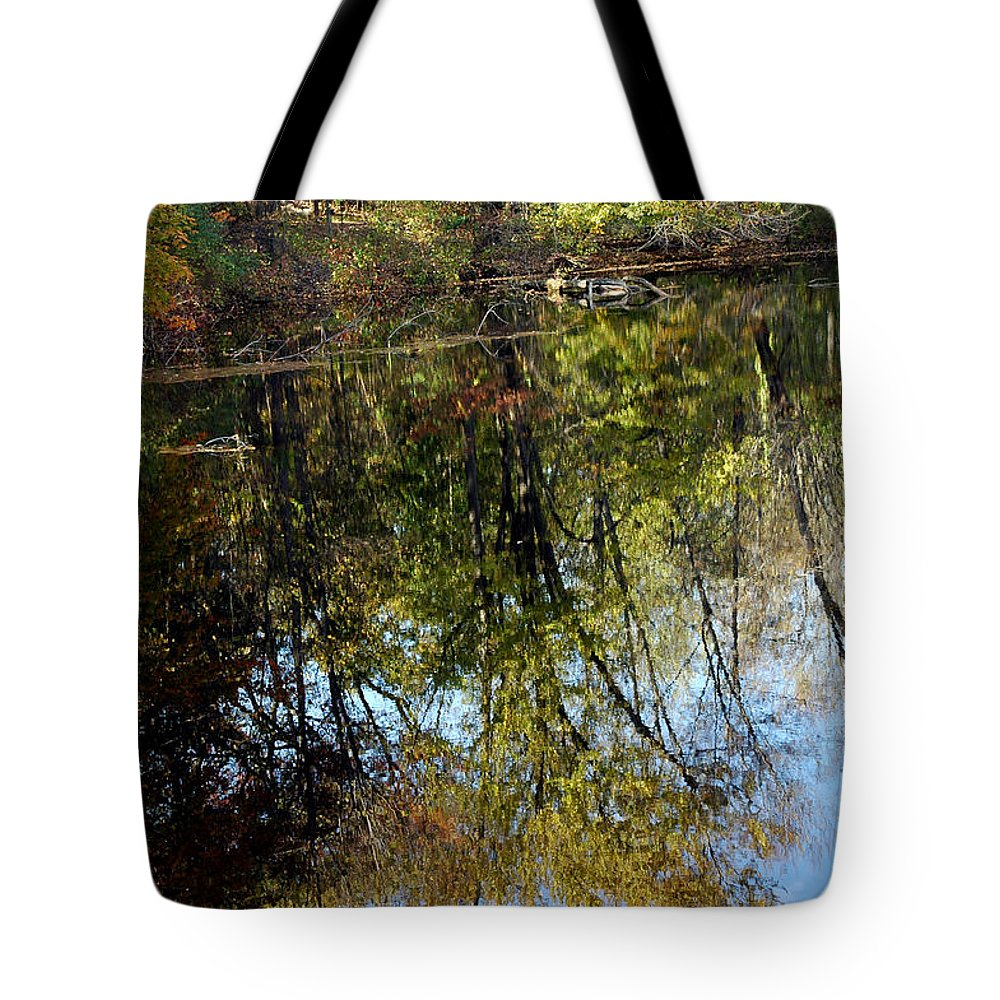 Usa Tote Bag featuring the photograph Fall Sand Bar Reflections by LeeAnn McLaneGoetz McLaneGoetzStudioLLCcom