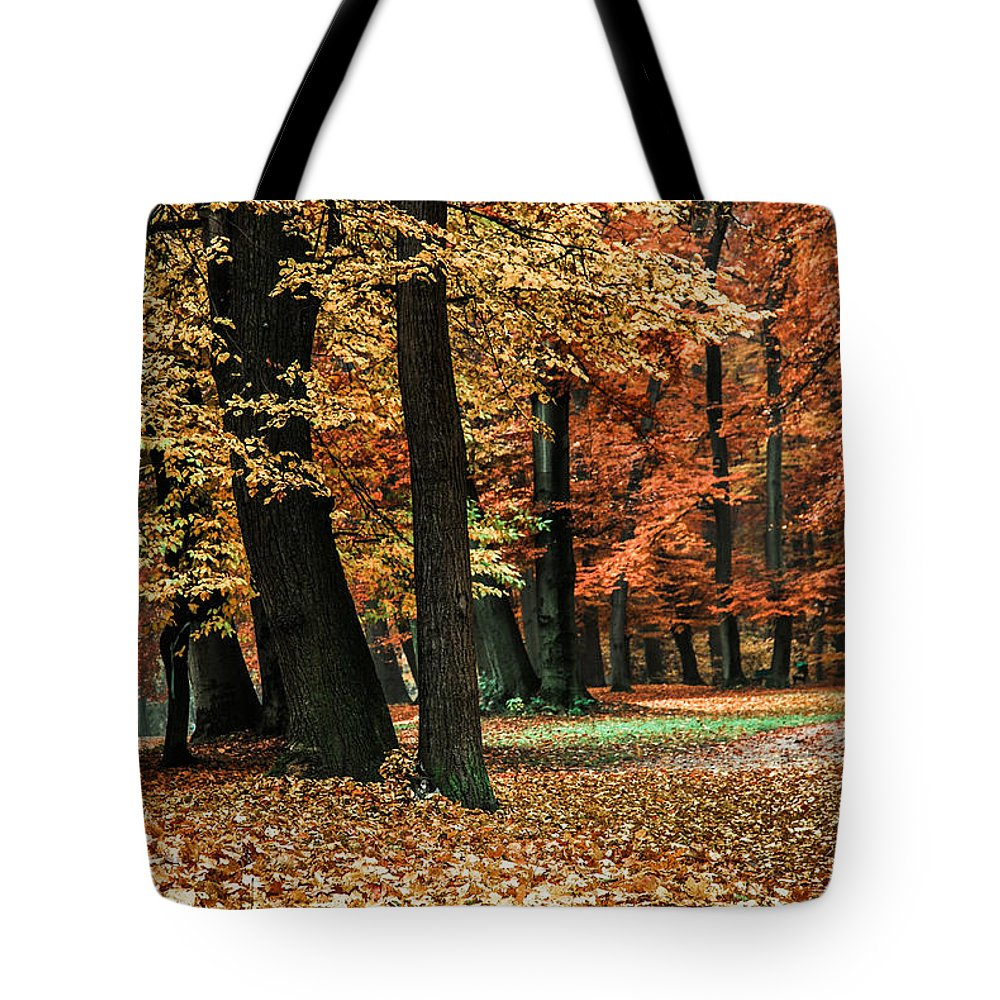 Autumn Tote Bag featuring the photograph Fall Scenery by Hannes Cmarits