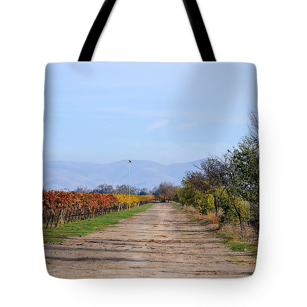 Vineyards Tote Bag featuring the photograph Fall Vineyard by Karen W Meyer