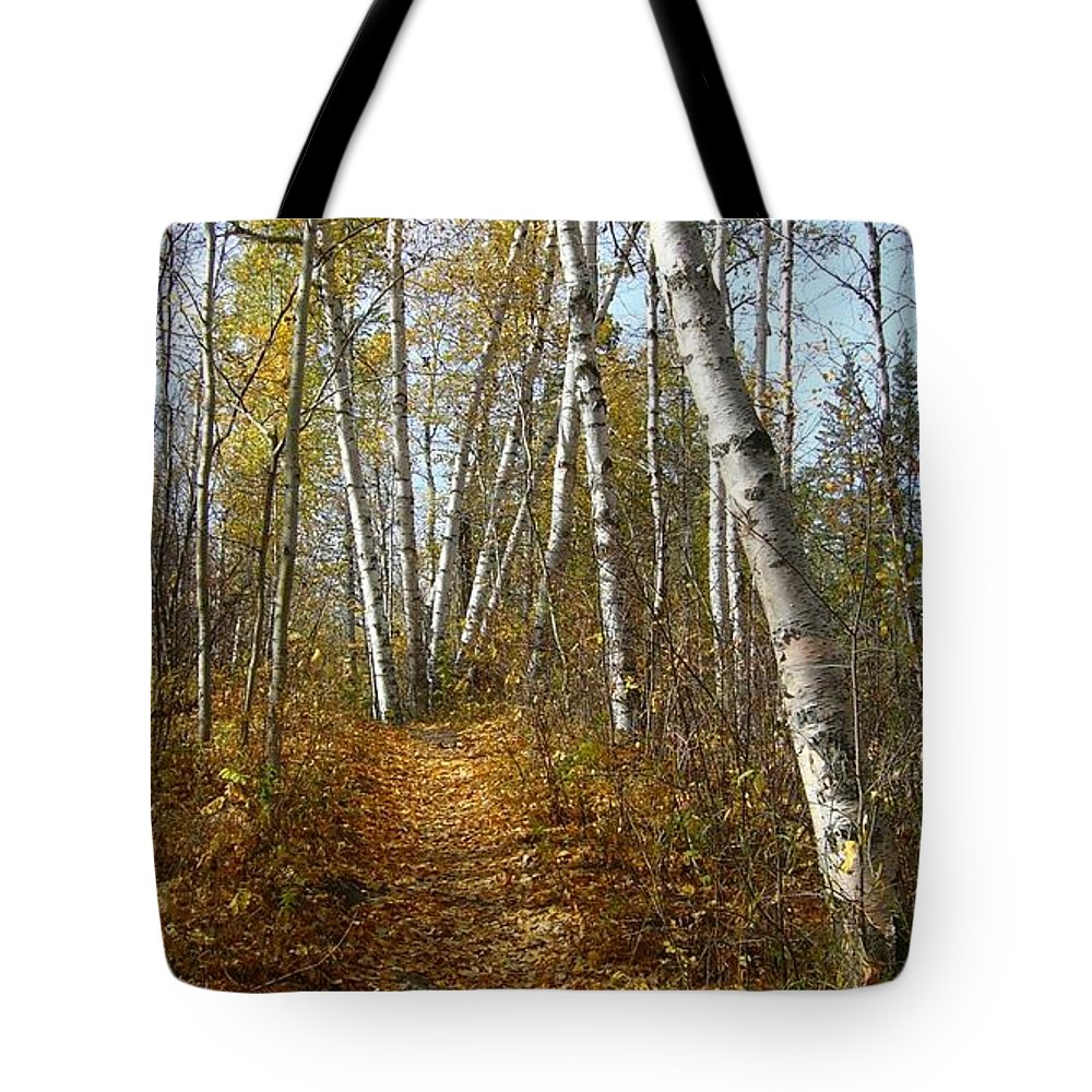 Nature Tote Bag featuring the photograph Falling Leaves by Jim Sauchyn