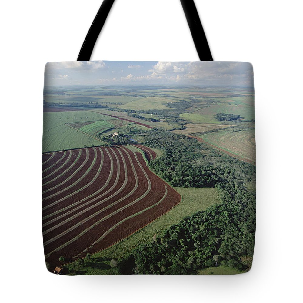 Mp Tote Bag featuring the photograph Farming Region With Forest Remnants by Claus Meyer