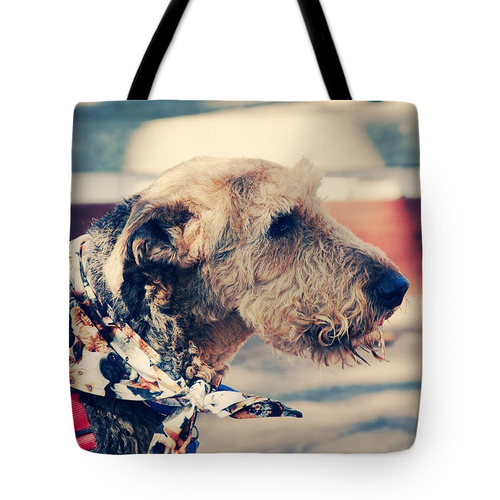 Dog Tote Bag featuring the photograph Airedale On The Fashion Runway by Toni Hopper